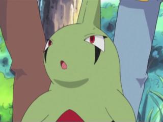 Larvitar di Ash