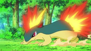 Quilava di Ash